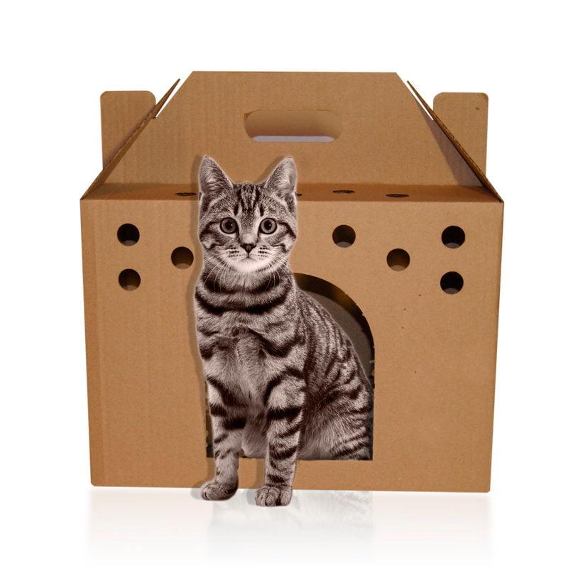 Во что упаковать… животное?